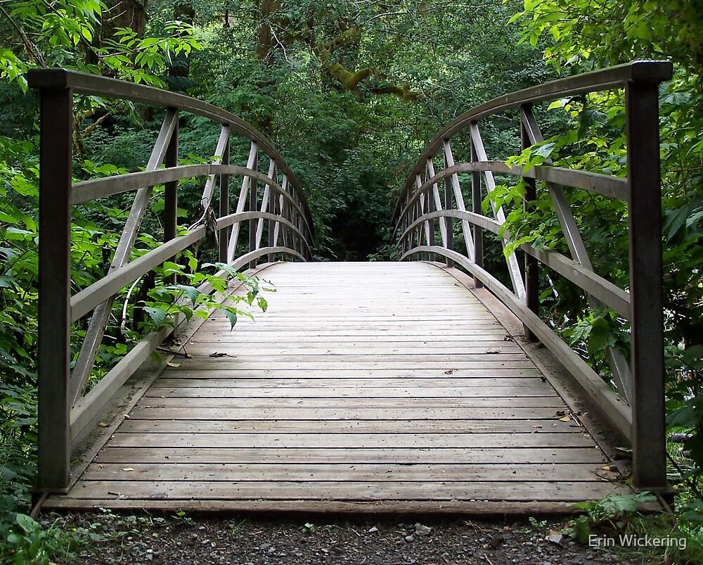 Bridge to Infinity by Erin Wickering
