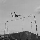 The Flight by Andrew Hoisington
