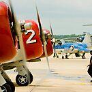 T-6 Texan Line up by Paul Lenharr II