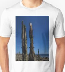 Eroded Wooden Spikes, Lindisfarne T-Shirt