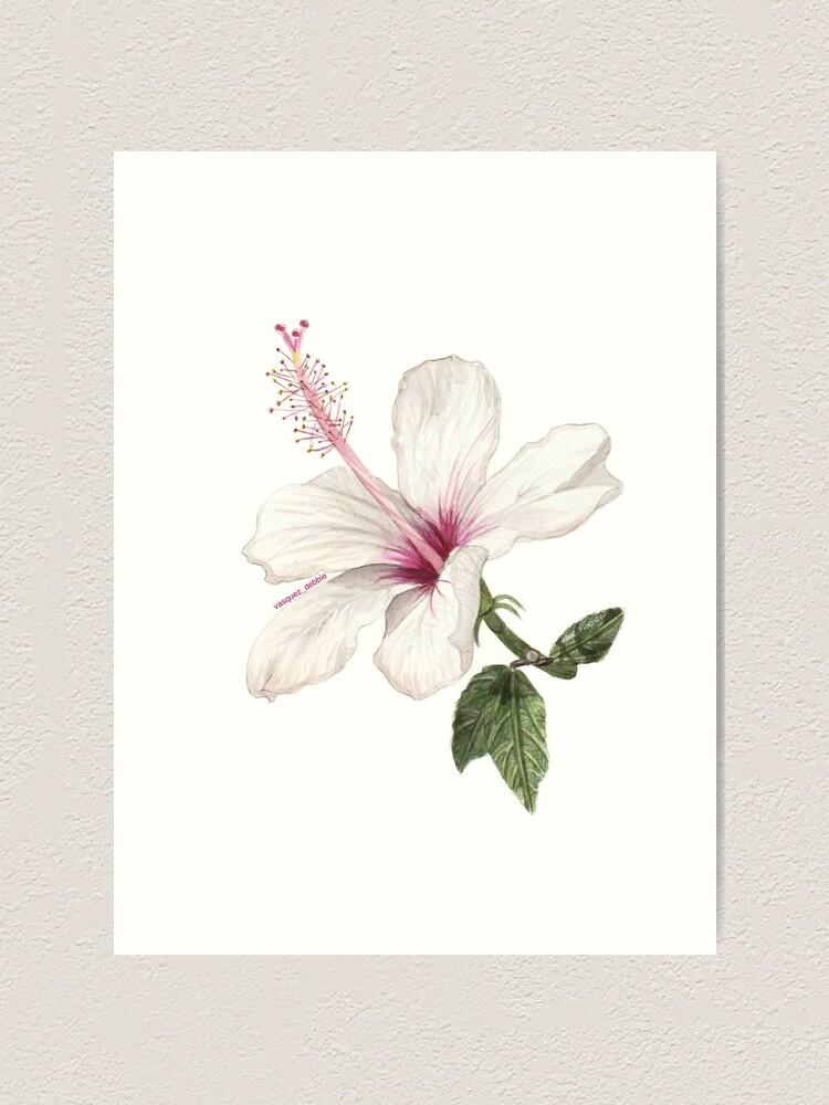Alternate view of Hibiscus Flower Art Print