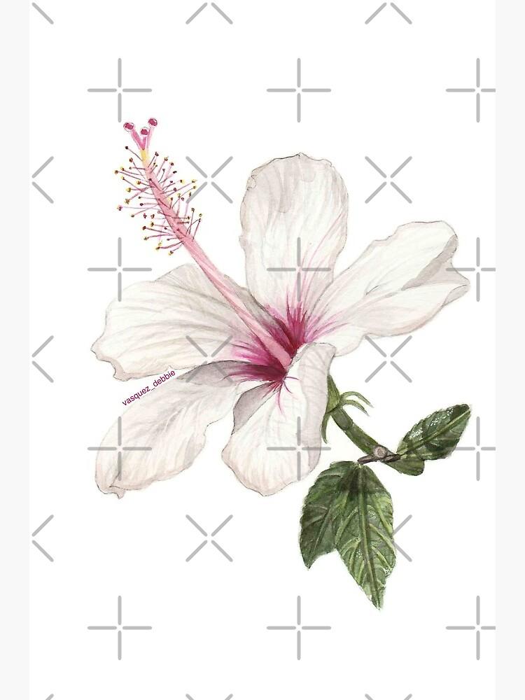 Hibiscus Flower by vasquezdebbie