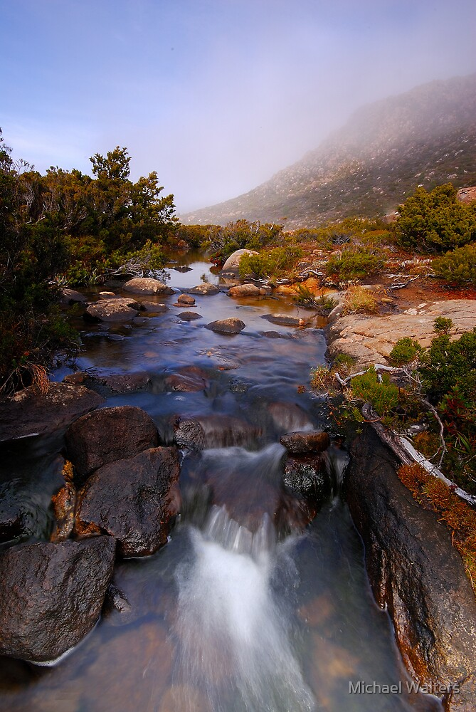 Mountain stream by Michael Walters