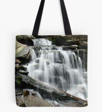 Ricketts Glen - Cayuga Falls Tote Bag