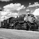 Steam Locomotive by Michael Wolf