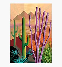 Tucson Photographic Print