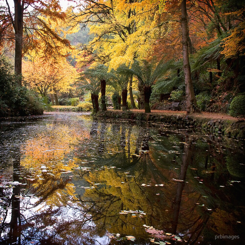 Autumnal Scene II by prbimages