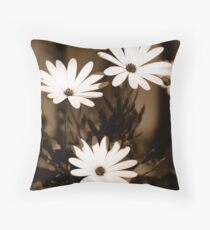 White Daisy Flowers in Sepia Throw Pillow