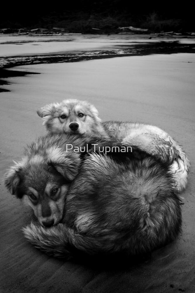 Friendship by Paul Tupman