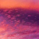 Sunset 2015-3 by Richard Bozarth