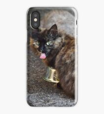 Brown and Grey Two Cat Cats Eating Together iPhone Case/Skin