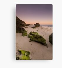 Seaweed rocks Canvas Print