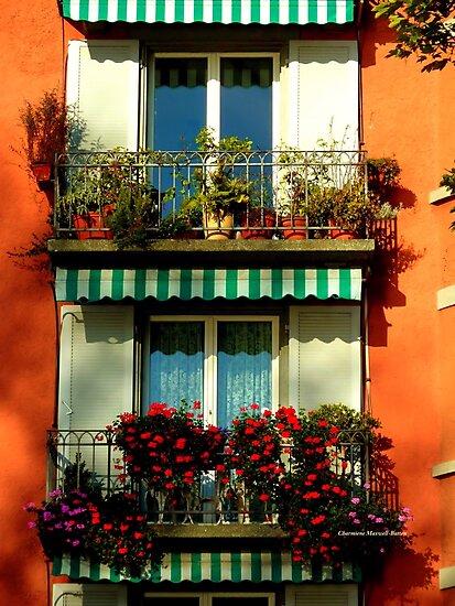 Pretty Swiss Window Box by Charmiene Maxwell-Batten