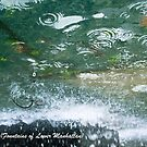 Trickle Up (Fountains of Lower Manhattan) by Lizz Stringfield