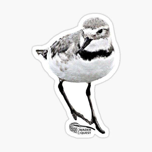 Wrybill  Sticker