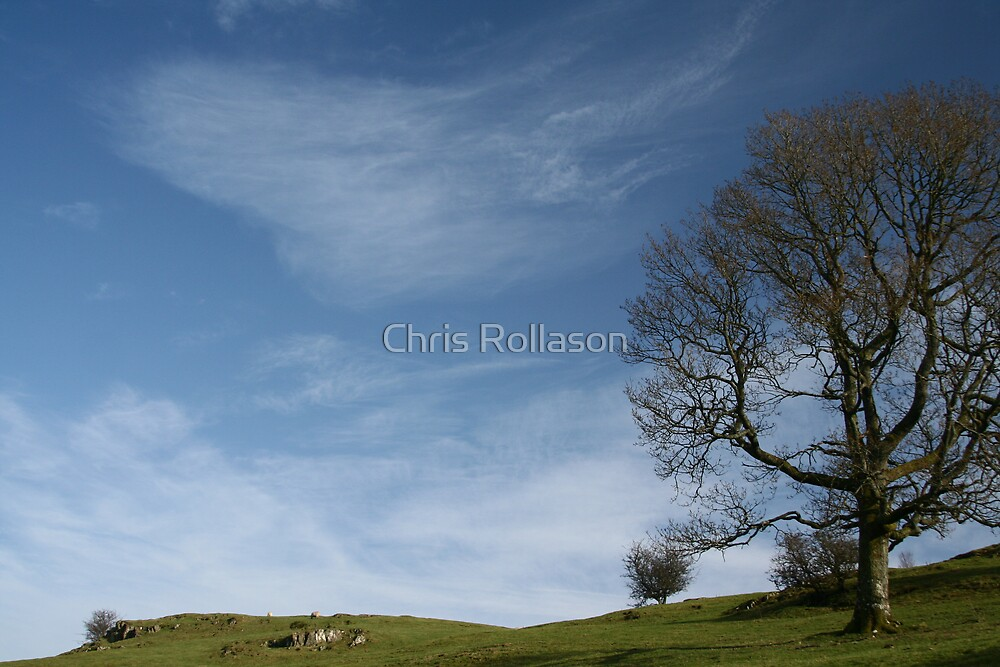 Windermere by Chris Rollason