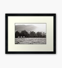 Happy Eaters Framed Print
