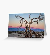 Sunrise Tree Greeting Card