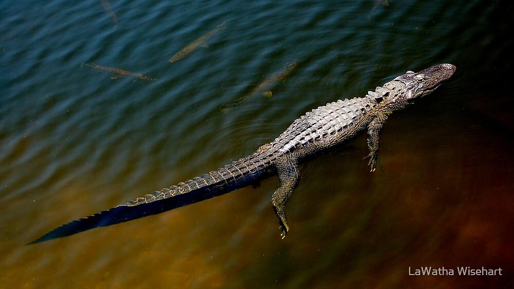 Lazy Gator by LaWatha Wisehart