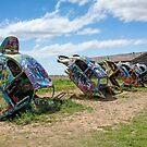 Cars of Route 66 / VW Slug Bug Ranch by RoySorenson