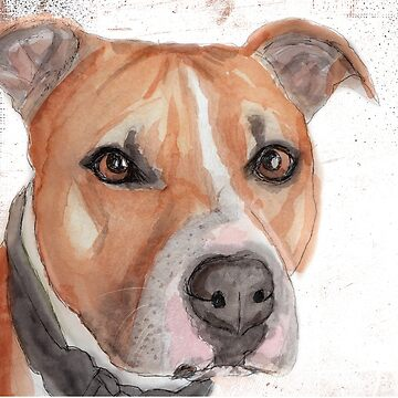 Staffordshire Bull Terrier by pjscribble