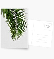 Postales Palm Leaf Green I