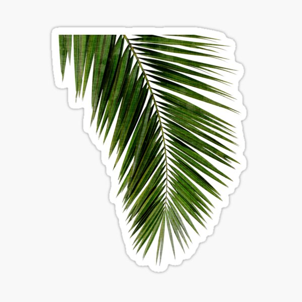 Palm Leaf Green I Pegatina