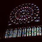 South C13 Window Notre Dame Paris 19840818 0043 NOT FOR SALE by Fred Mitchell