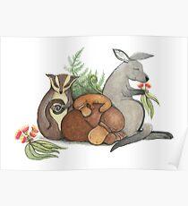 Native Australian Babies – With Kangaroo, Sugar Glider And Platypus Poster
