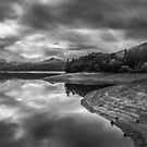 Maroondah Reservoir by Christine Wilson