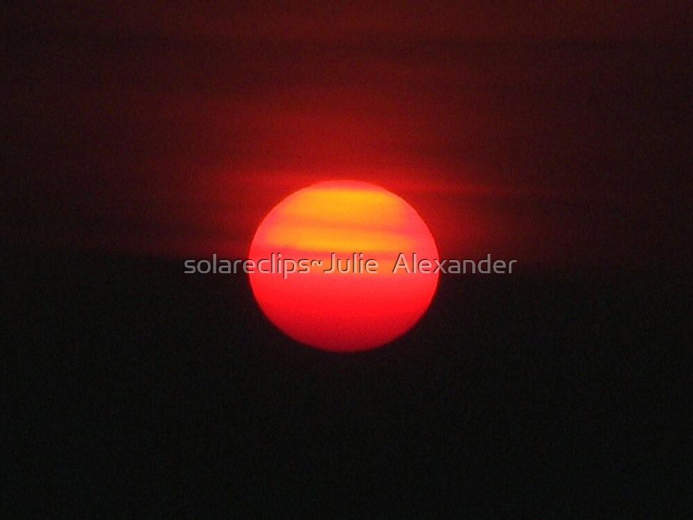 Up close and personal  by solareclips~Julie  Alexander