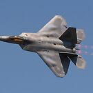 F-22 raptor by ScottH711
