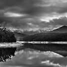 Maroondah Reservoir 3  by Christine Wilson