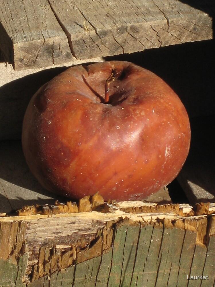 Ellijay apple in old shed by Laurkat