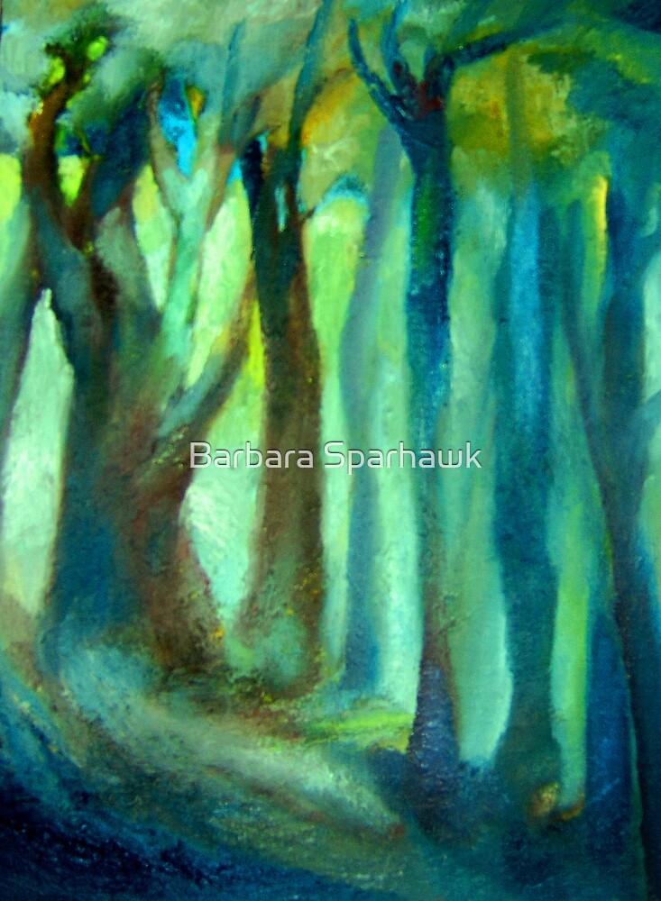 Cachagua Forest by Barbara Sparhawk