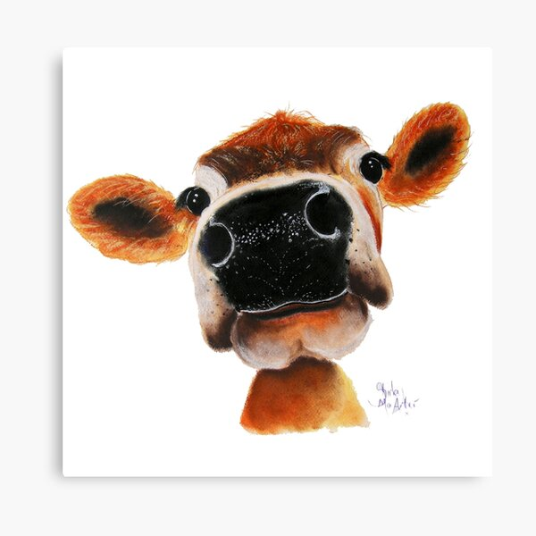 JERSEY CoW PRiNT ' JeRSeY JoY ' BY SHiRLeY MacARTHuR  Canvas Print