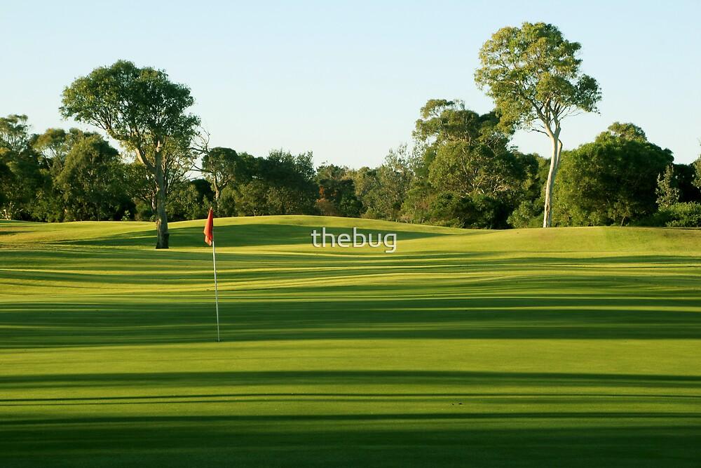 Morning Golf by thebug