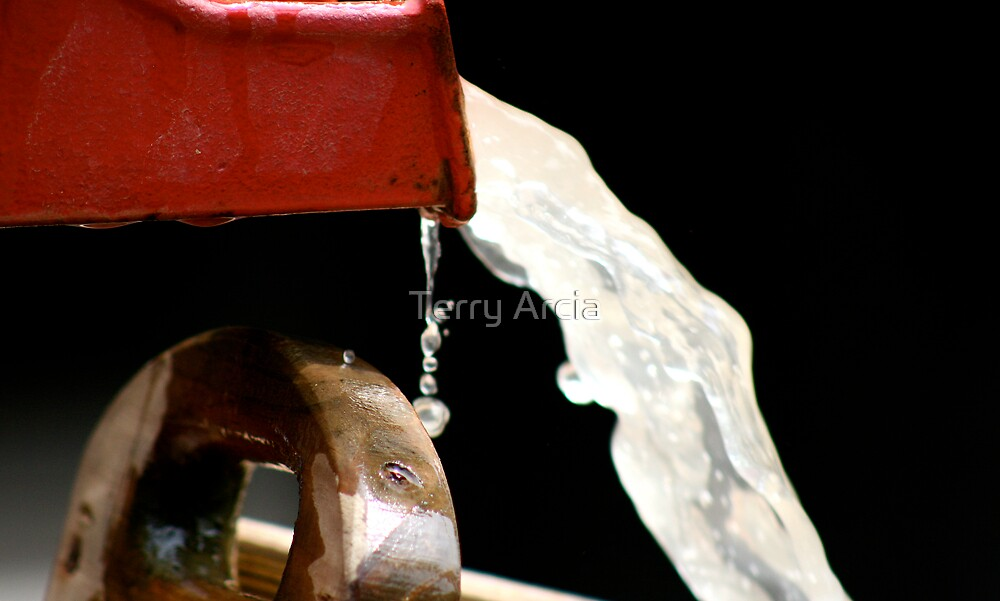 Living Water by Terry Arcia