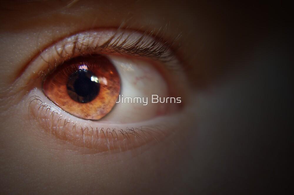 I spy by Jimmy Burns