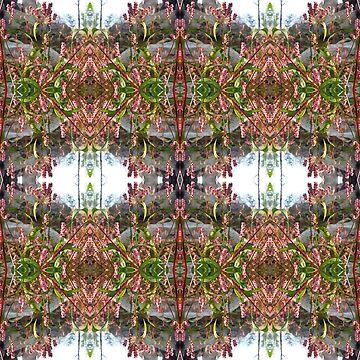 Flowered Window by Feraloidies