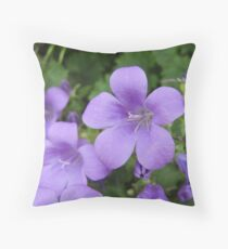 Early Love  Throw Pillow