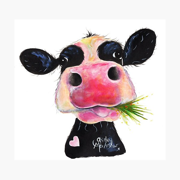 NOSEY COW PRiNT 'HURLEY BURLEY' BY SHiRLeY MacARTHuR Photographic Print