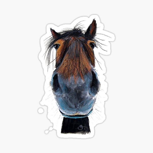 HORSE PRiNT 'HAPPY HARRY' BY SHiRLeY MacARTHuR Sticker