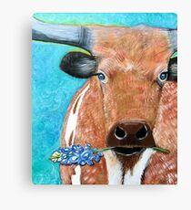 Longhorn with Bluebonnet Canvas Print