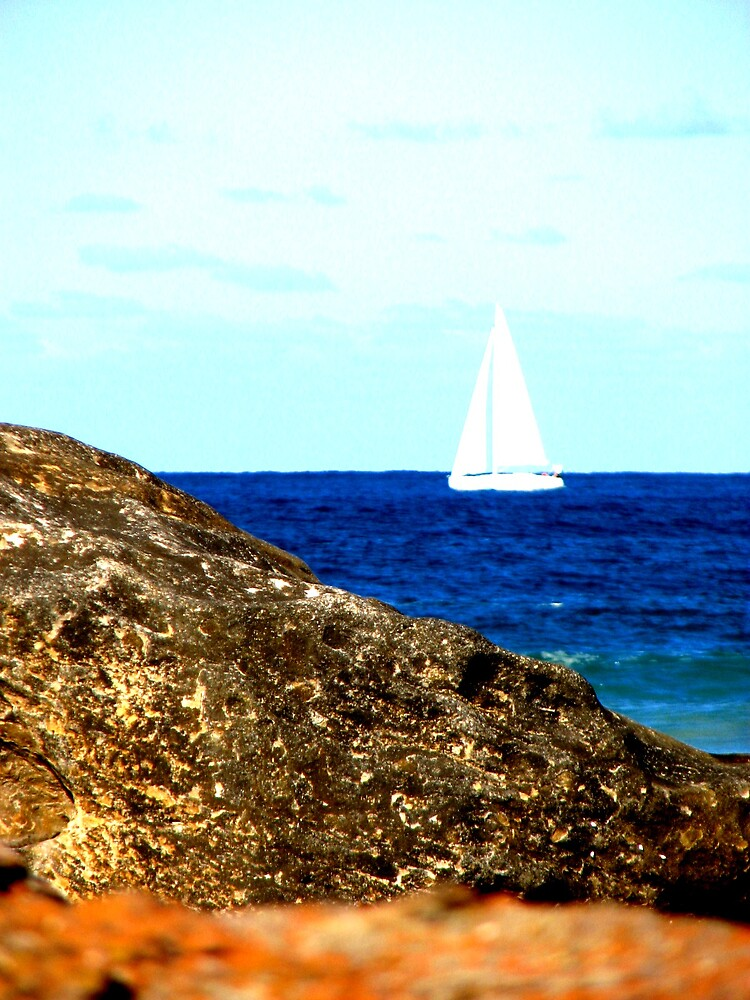 sail on the sea by lauralock