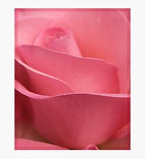 Beauty in Pink Photographic Print
