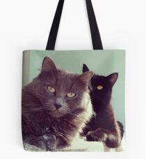 Cats in love. grey and black / photo of cute couple of cats Tote Bag
