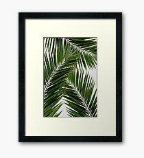 Palm Leaf Green II Framed Print