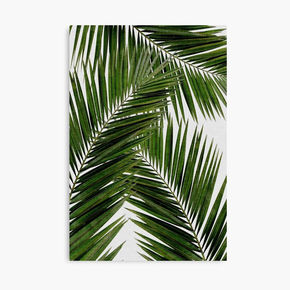 Palmblattgrün II Leinwanddruck