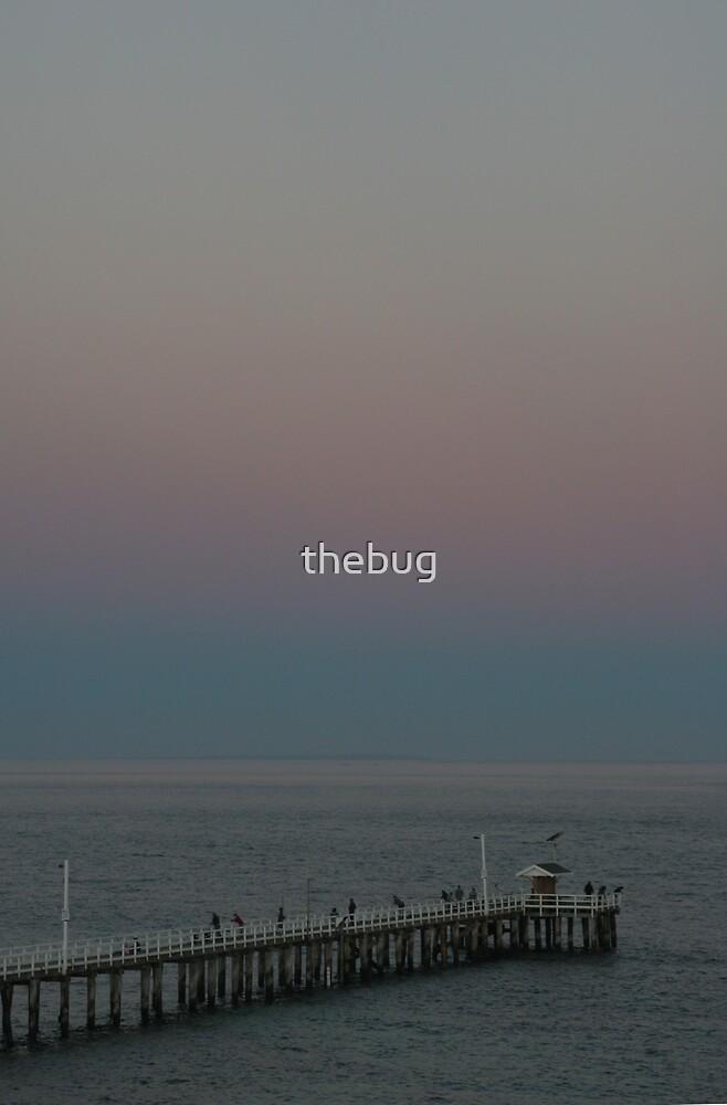 Fishing pier by thebug